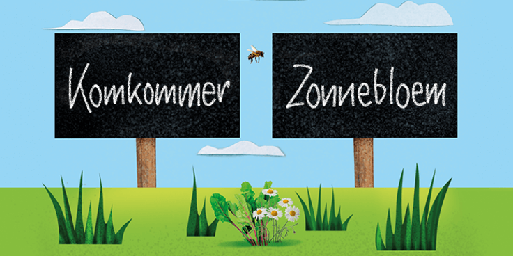 De komkommer en zonnebloem MoestuinMaatjes van Albert Heijn passen bij elkaar.