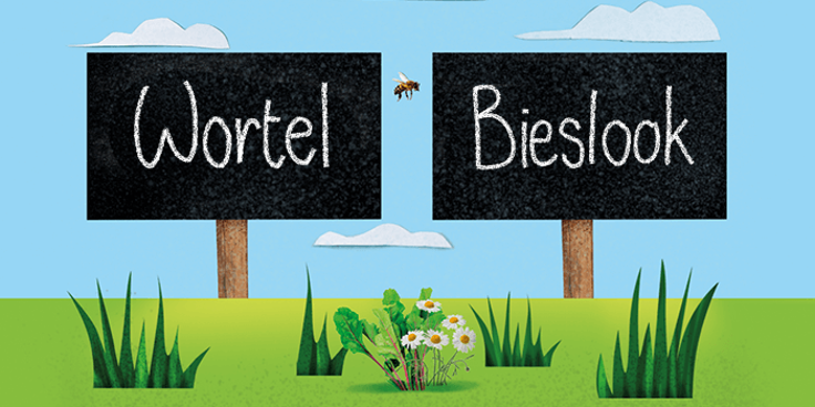 De wortel en bieslook MoestuinMaatjes van Albert Heijn passen bij elkaar.