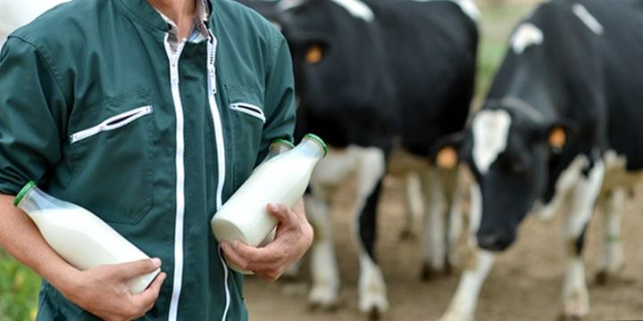 Biologische melk van Albert Heijn
