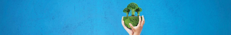 Bij Albert Heijn staat duurzaamheid centraal.
