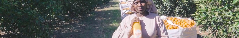 Deze video is gemaakt op plantages en sitesvan toeleverancier LDC Juice. ToeleverancierCitrosuco kent soortgelijkeplantages en sites. Bekijk de video.