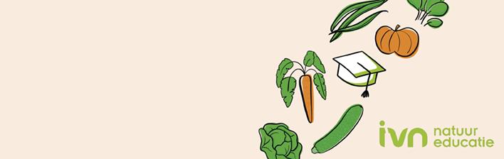 Succes oogsten in jouw moestuin?