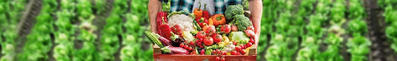 Groente en fruit in het seizoen op hun lekkerst.