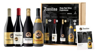 Faustino Red Wine Tasting Experience
