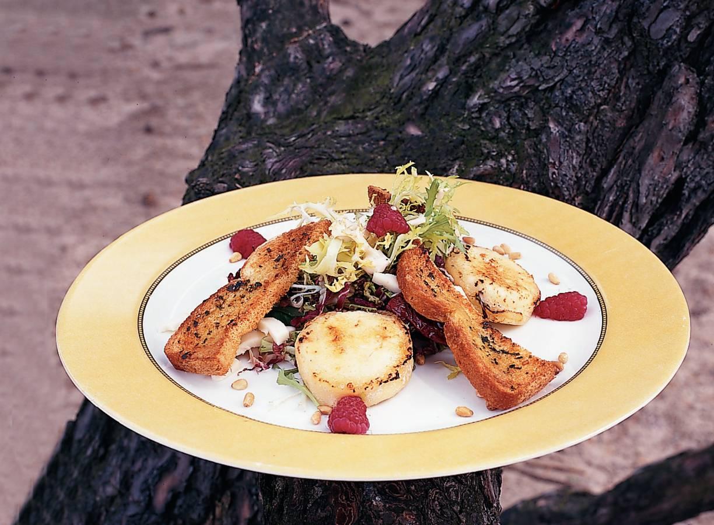 Salade met twee soorten geitenkaas en pestoboterhammen