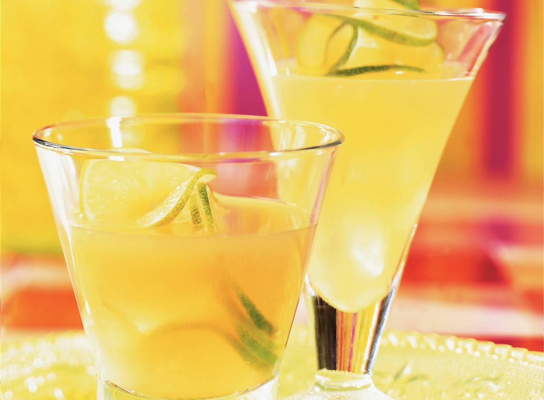 Frisse fruitdrank: cactus-citrusdrank