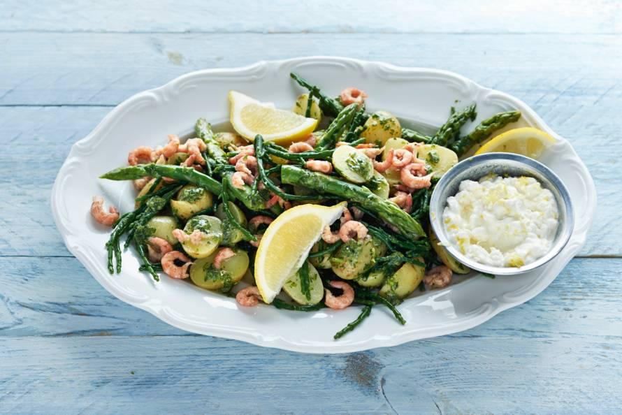Salade van zeekraal, krieltjes en garnalen