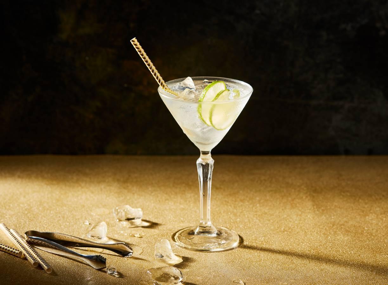 Martini Bianco met tonic