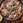 Boeuf Bourguignon (stoofschotel met wijn en rundvlees)